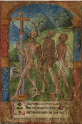 SKELETONS WALKING - 1495