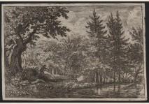 Everdingen - Lake in the woods
